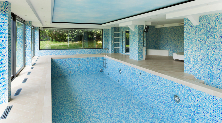 Pool vacation-Sarasota Pool