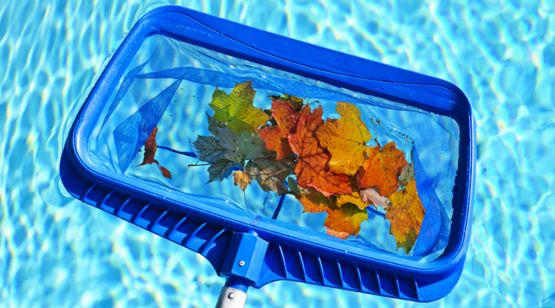 4 Steps To Prepare Your Swimming Pool For The Fall Season-Sarasota Pool
